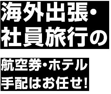 海外出張・社員旅行の 航空券・ホテル手配はお任せ!